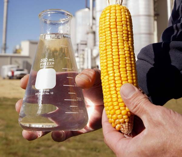 food vs fuel ethanol corn