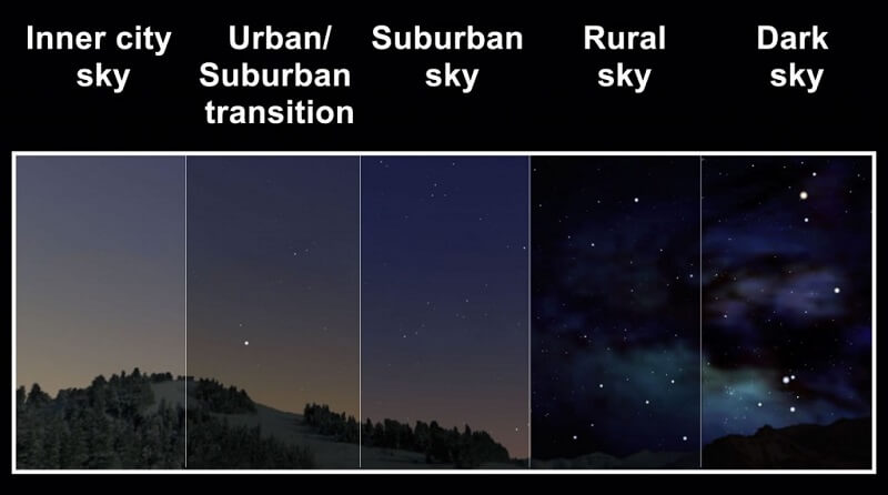 the effects of light pollution