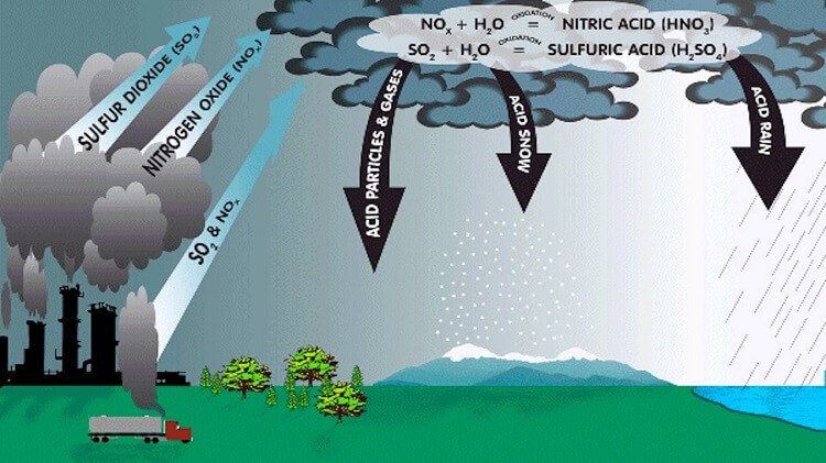 what causes acid rain
