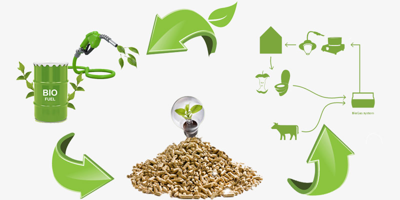 types of biomass energy