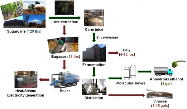 sugarcane biofuel production circuit