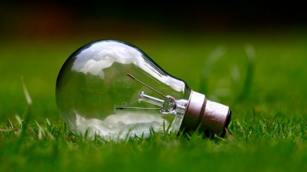 green energy light bulb