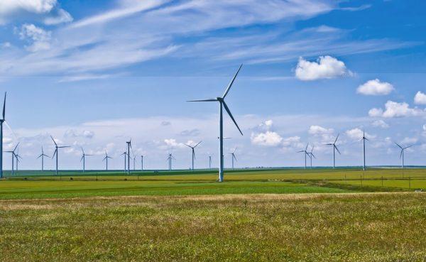 wind energy farm photo