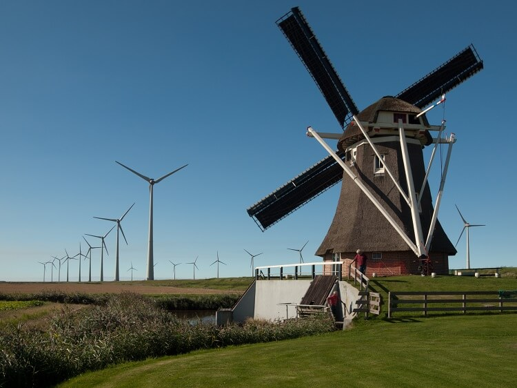a Dutch windmill and multiple wind turbines behind it