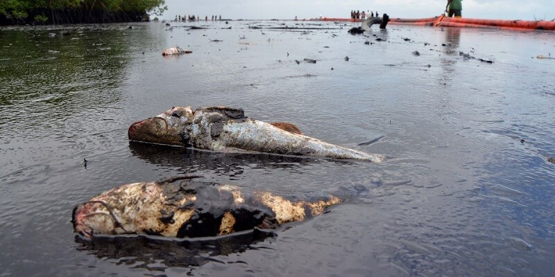 oil spill in Trinidad and Tobago
