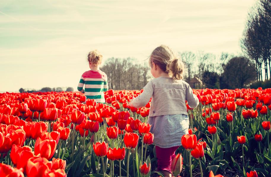 earth day activities: 2 kids walking on red tulip garden under blu sky
